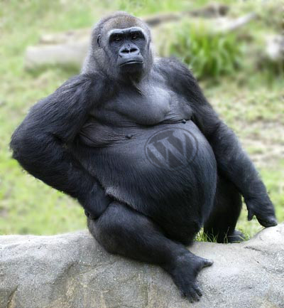 idealever-solutions-800lb-blogging-gorilla.jpg